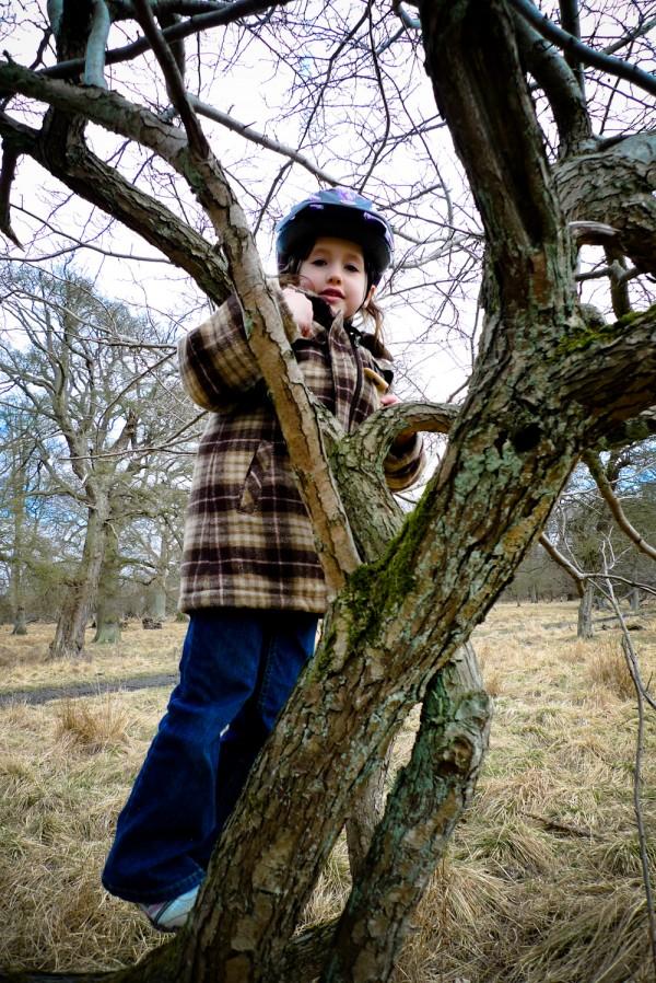 2010-04-10_emma_climbing_tree_01